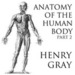 Anatomy of the Human Body, Part 2