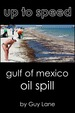 Up to speed: Gulf of Mexico Oil Spill