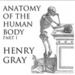 Anatomy of the Human Body, Part 1