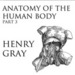 Anatomy of the Human Body, Part 3