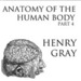 Anatomy of the Human Body, Part 4