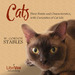 Cats: Their Points and Characteristics